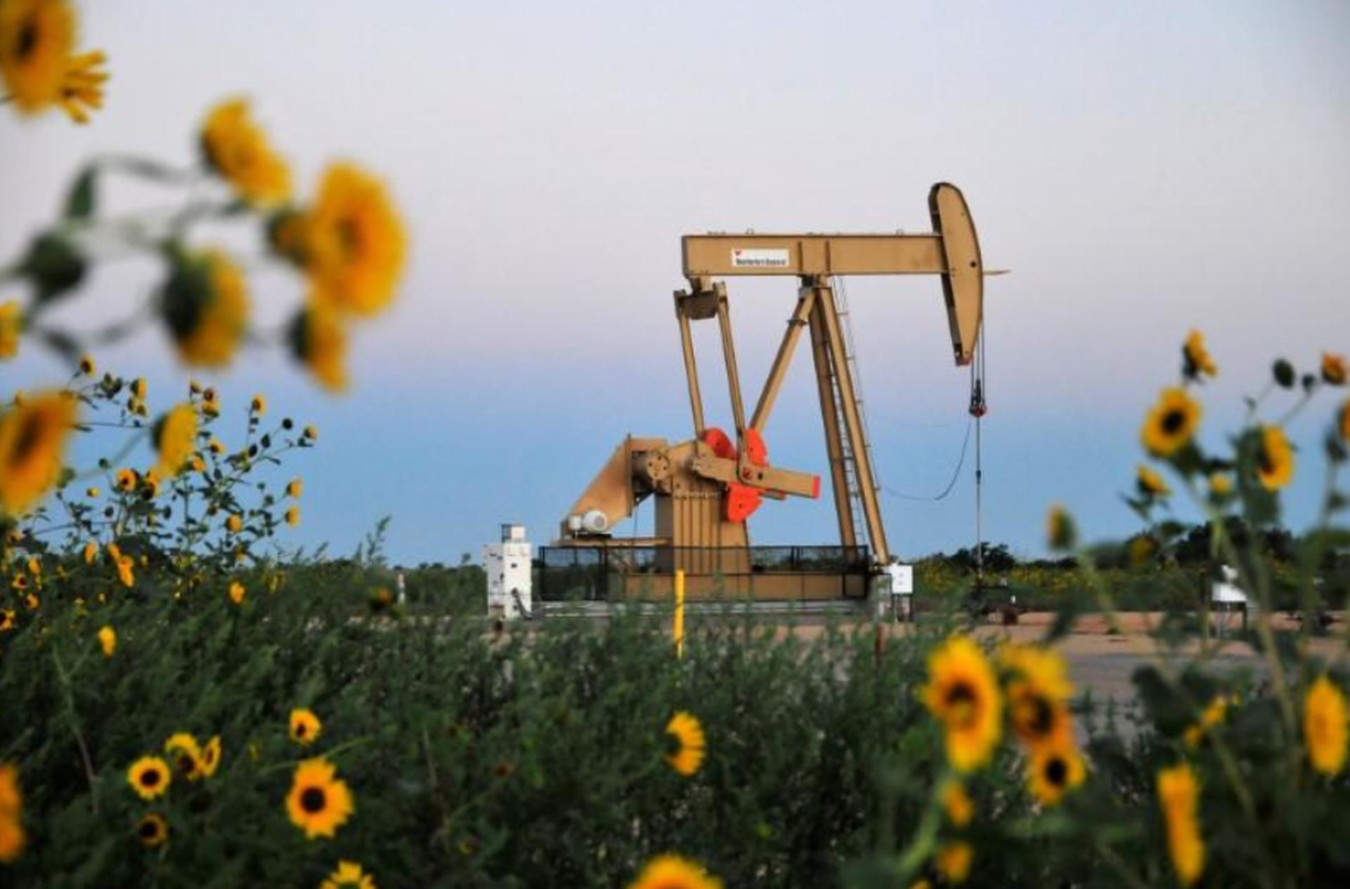 EIA下調2022年國際油價預估 料OPEC+和美國產量增長將蓋過需求